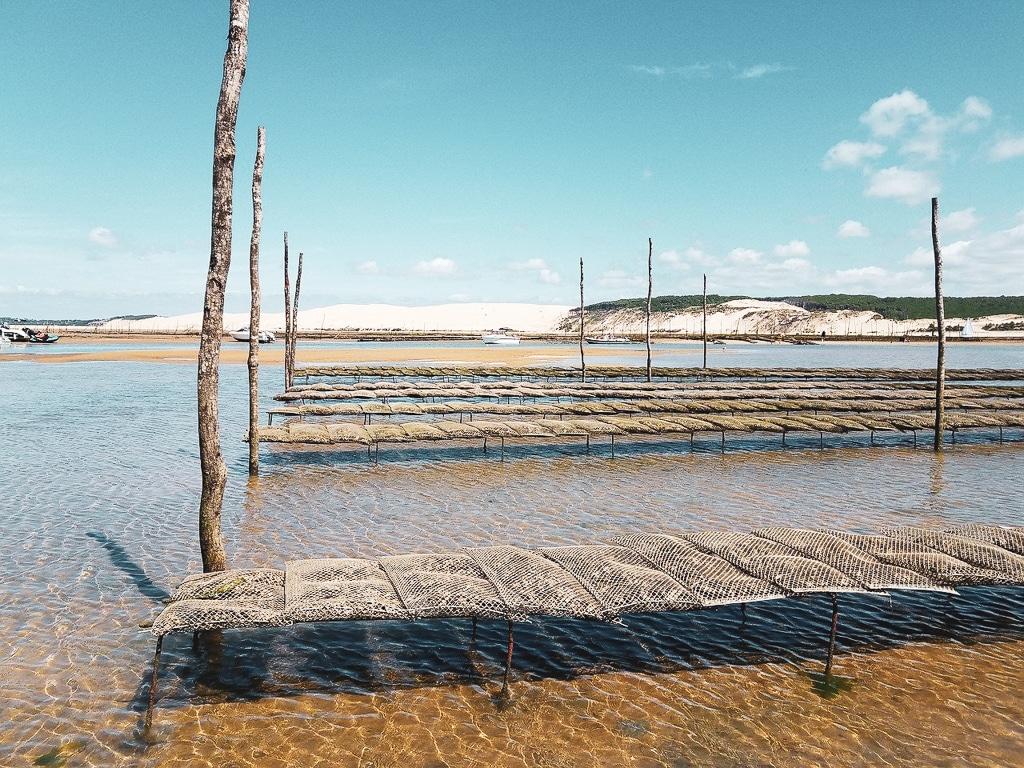 visiter le bassin d arcachon